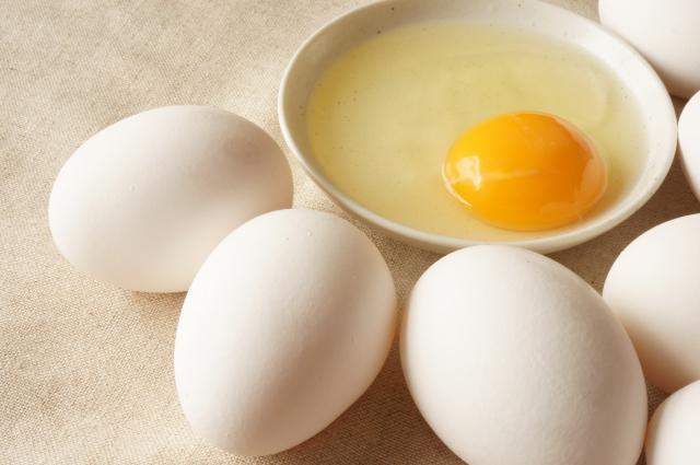 卵の部分で栄養が違う